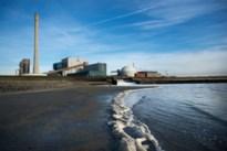 "Kalmthout eist inspraak in langer open houden Nederlandse kerncentrale: ""Borssele ligt op amper 50 km"""