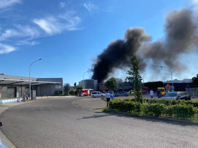 Grote brand op bedrijventerrein in Wijnegem is onder controle: één lichtgewonde