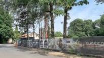 """Nieuwe beleidsnota voor bouwregels in Schilde: """"Eengezinswoningen zijn voortaan de norm"""""""