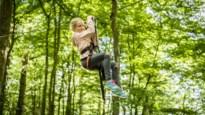 GETEST. Avontuur in de natuur: klimmen en klauteren in Natura Parc
