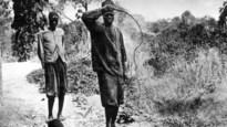 Voorname Antwerpse families financierden ongekende wreedheden in Congo