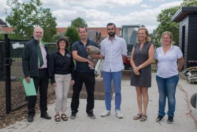 Atheneum Heist is ambassadeur van levend erfgoed: van Kempense schapen tot Mechelse kalkoenkoppen