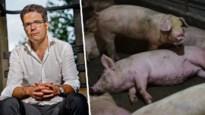 """Steven Van Gucht over nieuw virus in China: """"Een ernstige kandidaat voor pandemie, één om in het oog te houden"""""""