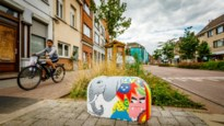 Door jeugd beschilderde varkensruggen kleuren Nekkerspoelstraat
