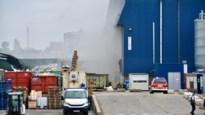 Brand bij afvalverwerkend bedrijf in Ruisbroek