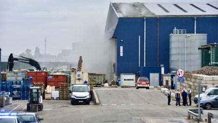 Tweede hevige bedrijfsbrand deze week in Ruisbroekse kanaalzone: afval in loods van Renewi vat vuur
