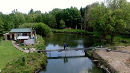 VIDEO. Staf (68) en Mieke (71) wonen op klein eiland in de Geelse bossen