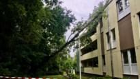 Boom valt tegen appartementsgebouw