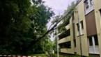 Boom valt tegen flatgebouw