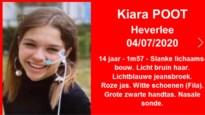 Nichtje van Theo Francken (14) vermist in Heverlee