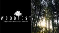 Dansen in je eigen bubbel op geheime locaties: Woodfest al zeker in drie Antwerpse gemeenten
