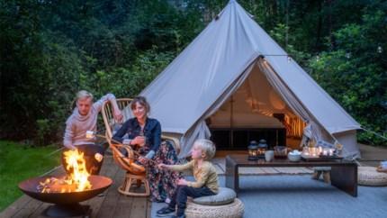 """Elve uit Kontich bouwt staycation-paradijs in Haasdonk: """"Even goed als bij Marc Coucke in Durbuy"""""""
