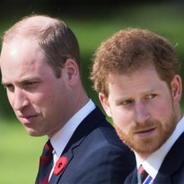 William en Harry verdelen erfenis van Diana over hun eigen stichtingen