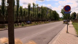 500 meter verder wonen van de Umicore-fabriek maakt wereld van verschil