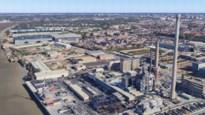 """PVDA vreest voor ontvolking Hobokense wijk: """"Nieuwe bufferzone op de terreinen van Umicore, niet in de buurt"""""""