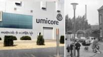 Zieke kinderen, dode paarden en prei van lood: de zware geschiedenis van de Umicore-fabriek in Hoboken