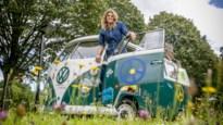 Een zomer zonder Verklapt, maar mét Nele Goossens on tour door de Kempen en Mechelen