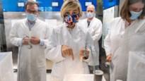 Tropisch Instituut in Antwerpen laat in streng beveiligd labo zelfgekweekte muggen vechten