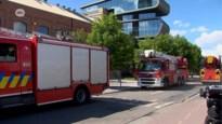 """Gouverneur ongerust over Umicore: """"Ze moeten brandweer verwittigen"""""""