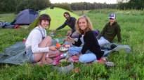 Paalkamperen populairder door Nederlands verbod, maar niet iedereen respecteert regels