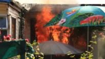 Brand verwoest stacaravan op recreatiedomein Waesmeer