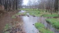 Weer uitstel voor bouw van elf huizen in overstromingsgebied: verkavelaar overweegt klacht in te dienen tegen politici