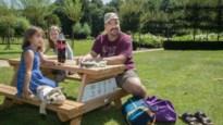 """Stad plaatste 119 picknickbanken voor 'staycation': """"Mooi, maar er zit nooit iemand"""""""