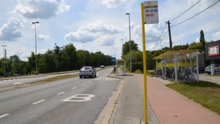 Vanaf volgende week eenrichtingsverkeer op brug Rodendijk