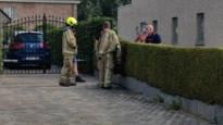 Brandweer rukt uit voor brandende struik