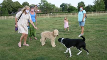 Honden bekaf na eerste verkenning van wellicht grootste en fraaiste loopzone in de regio