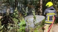 Vier brandweerkorpsen redden natuurgebied Langdonken en tweede verblijven