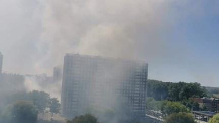 Korte maar hevige brand in struik: geen gewonden