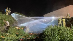 Man overleden na ontploffing op akker in Merksplas
