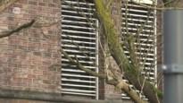 Noodopvangcentrum in Beveren preventief in lockdown na twee coronabesmettingen