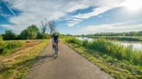 Met de fiets op vakantie in eigen streek: wat een plezier in Lier!