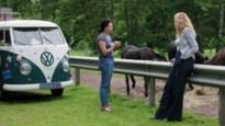 """Balen 'verklapt' het zelf: """"De politie zit achter je ezels"""""""
