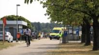 """Vijfjarig meisje gered uit vijver van De Ster dankzij snelle optreden redders: """"Ze is nu in de best mogelijke handen"""""""