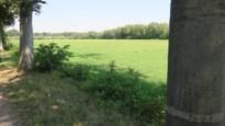 Waterpretpark op voorlopig nog droge weide vlakbij E10-plas