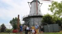 """Bekende rode windmolen is na restauratie wit geworden: """"De bakstenen hadden hun beste tijd gehad"""""""