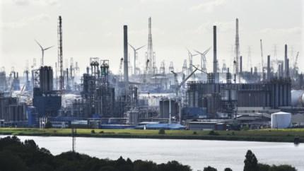 Weinig thuiswerk en dwingende brief zetten kwaad bloed: vakbonden klagen coronabeleid van bedrijven Antwerpse haven aan
