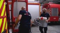 Brandweer overspoeld met oproepen om wespennesten te verwijderen