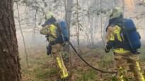Bosbrand in Pulderbos