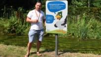 """Lof voor Molse campagne tegen voederen: """"Mensen beseffen niet hoe gevaarlijk brood is voor eenden"""""""