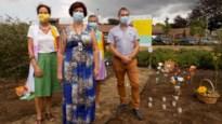 Eerste troostplek in provincie Antwerpen voor nabestaanden van coronaslachtoffers