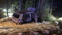Auto brandt uit na crash tegen boom, inzittende ongedeerd