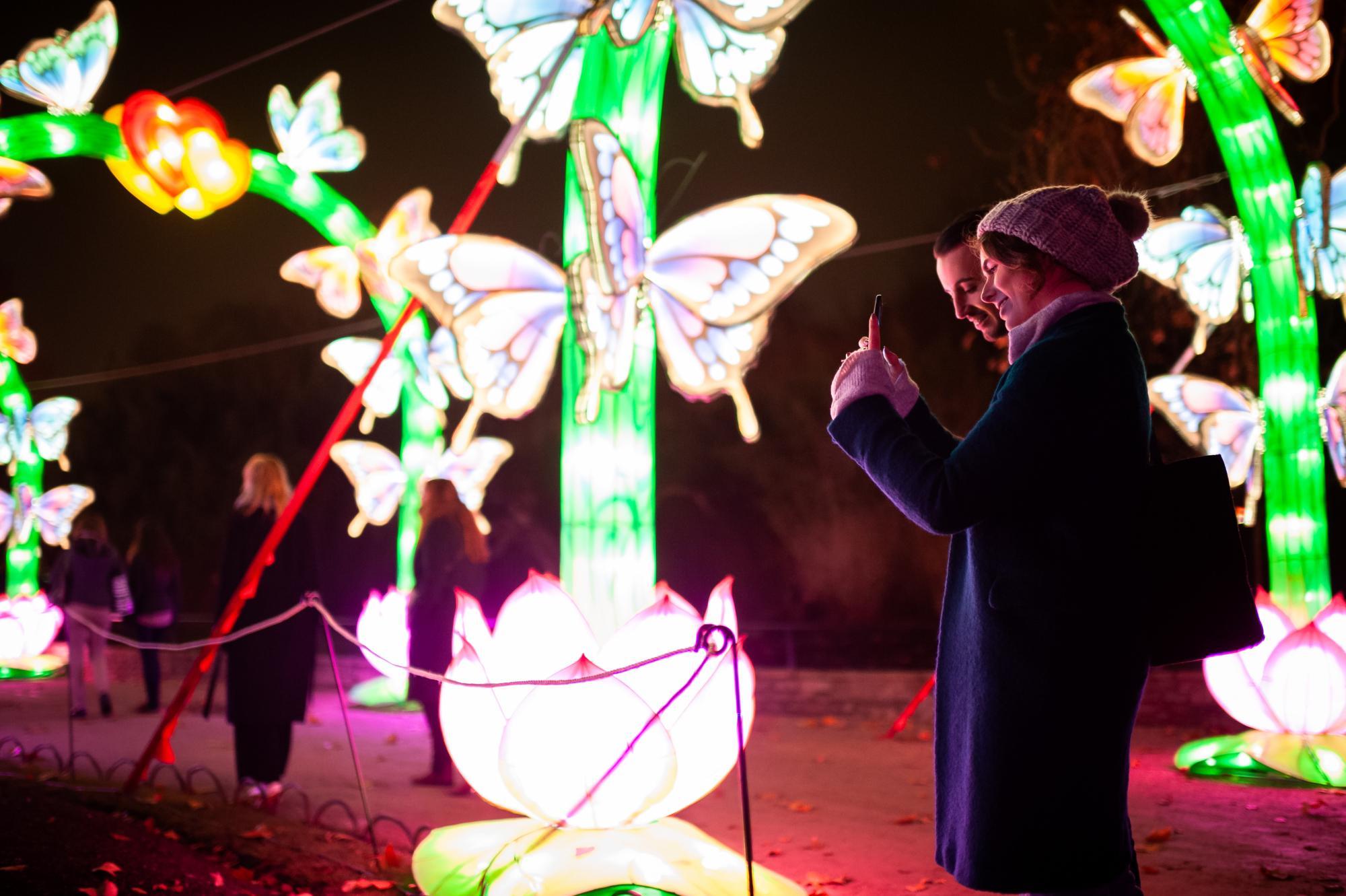 Deze Winter China Light In Zoo En Planckendael Gazet Van Antwerpen Mobile