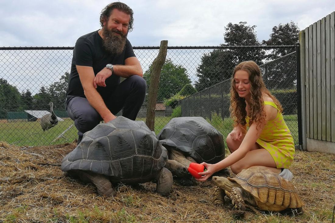 """ZOMERREEKS. Christophe en Flo hebben vijftig landschildpadden in hun tuin: """"in de winter kruipen ze op onze schoot"""""""