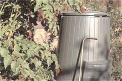 Compost is krachtvoedsel