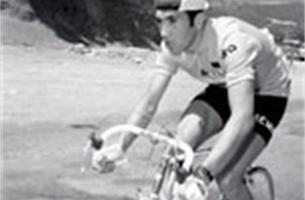 Eddy Merckx gelooft dat driekwart van peloton zuiver rijdt