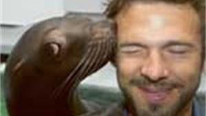 Acteurs creëren show met zeeleeuwen in Antwerpse Zoo